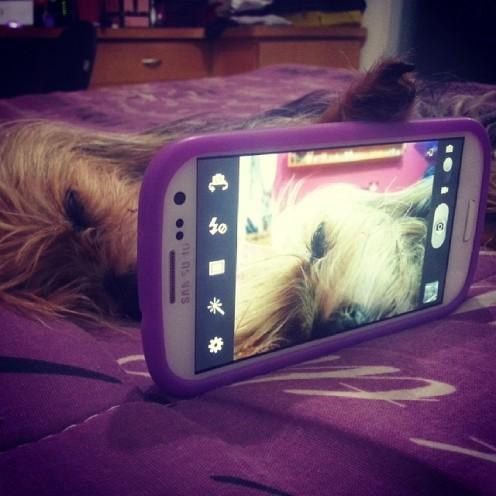 Hora do selfie! (14 de março de 2014)